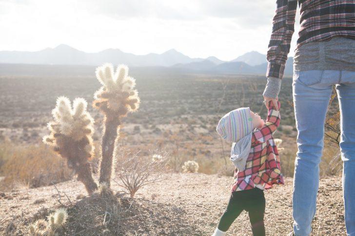 baby cactus child 69100 pexels